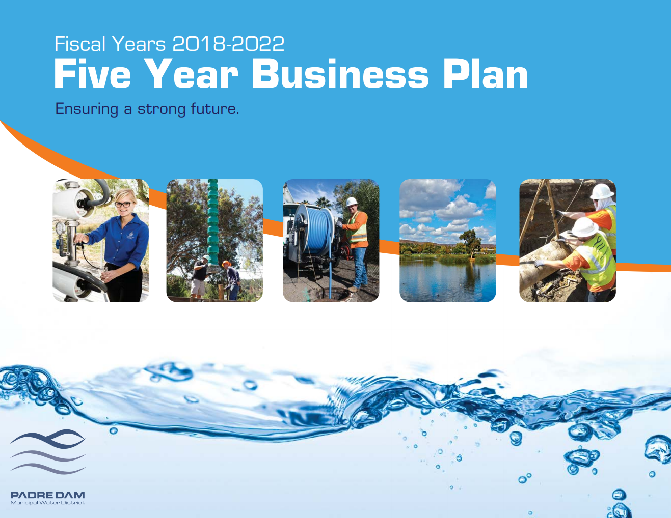 Five Year Business Plan Opens in new window